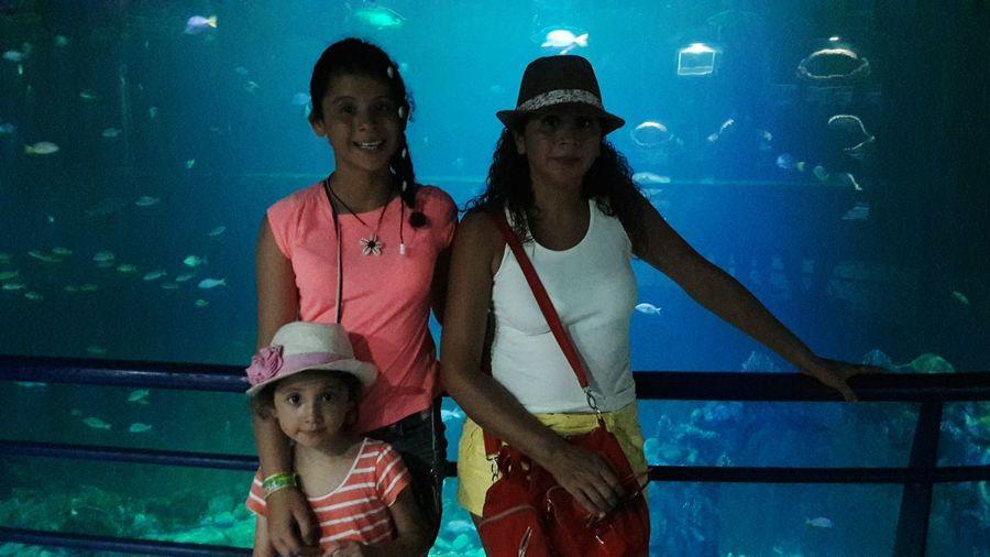 Portrait of family standing against fish tank at aquarium