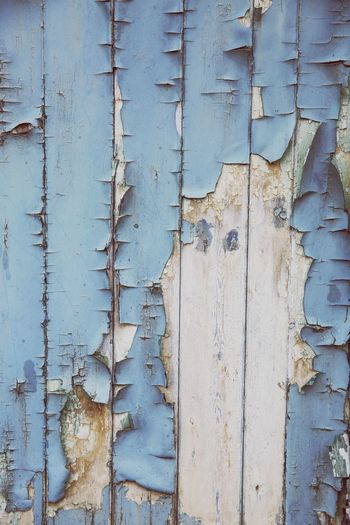 blistered and peeling blue paint on top of worn and weathered wood in a texture background image with copy space Unloved Dry Texture Backgrounds Copy Space Weathered Wood Peeling Paint Blistering Paint Derelict Door Full Frame Backgrounds Old Textured  Pattern Wood - Material Weathered No People Close-up Day Damaged Blue Decline Peeling Off Deterioration Wall - Building Feature Rough Run-down Paint
