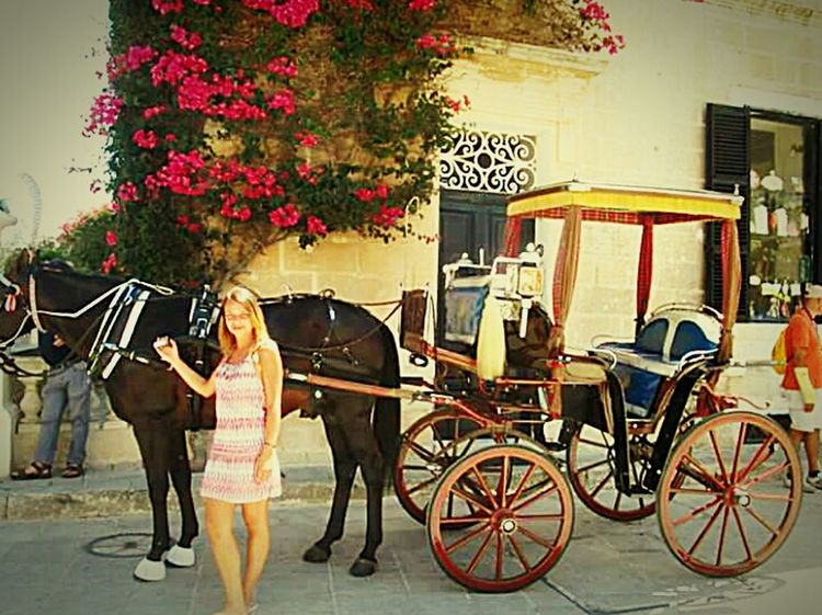 Malta Calesse Taking Photos Travel Mare Island Voyage That's Me Animals Sun