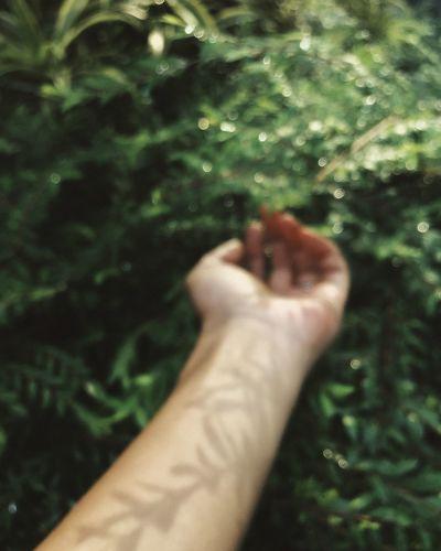 Human Hand Hand