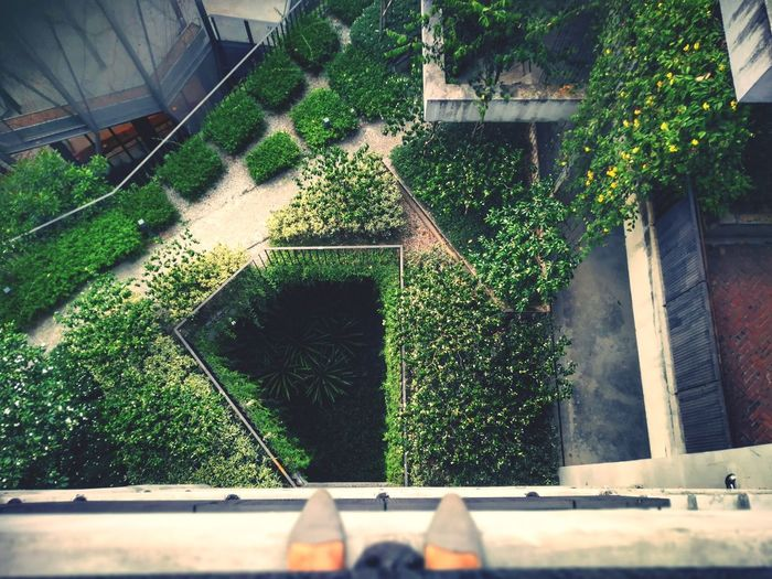 Looking down Urbanana: The Urban Playground Eagle Eyes View Park Green Architecture Building Exterior Built Structure Growing Countryside Garden Plant Life #urbanana: The Urban Playground