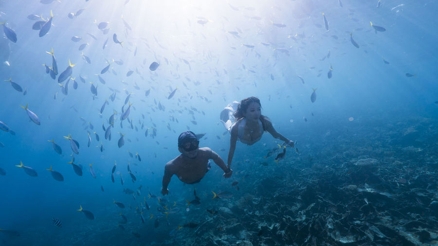 Couple scuba diving in sea