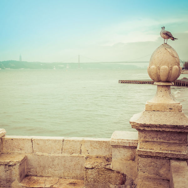 Blue Sky Bridge Enjoying The View Eyem Best Edits Historical Lisboa Portugal Outdoors Pastel Colors Pastel Power Ponte 25 De Abril River Sea Sea And Clouds Sea And Sky Sea Gull Tranquil Scene Tranquility Wall Water Waterfront Fine Art Photography