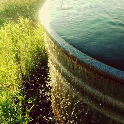Ranch Water First Eyeem Photo