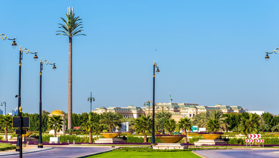 Street by palm trees against clear blue sky