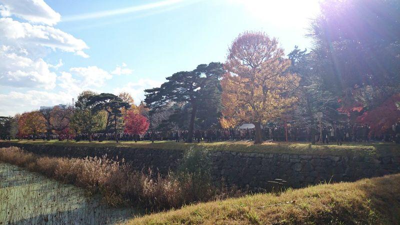 ずっと人大杉。 Imperial Palace Landscape Fall Colors EyeEm Nature Lover