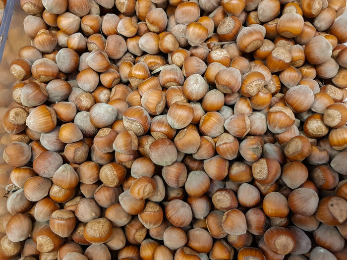Top view of pile of hazelnuts