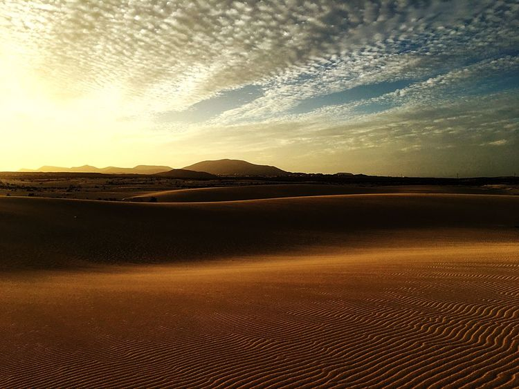 Landscape Sand Sand Dune Nature Sunset Scenics Desert Tranquility Beauty In Nature Arid Climate No People Sunlight Outdoors Horizon Over Land Sky Day Mountain Photography Photo