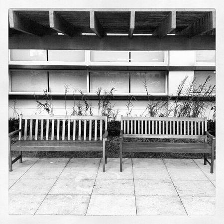 Espera... Fimdetarde Jardim Bancos Espera Tempo Jornada Cadeiras Sentadas