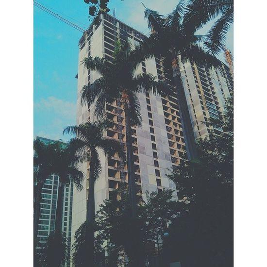 ? Jakarta Capital City Morning clear weather unfinished building high bottle palm sky vsco vscocam vscoplace