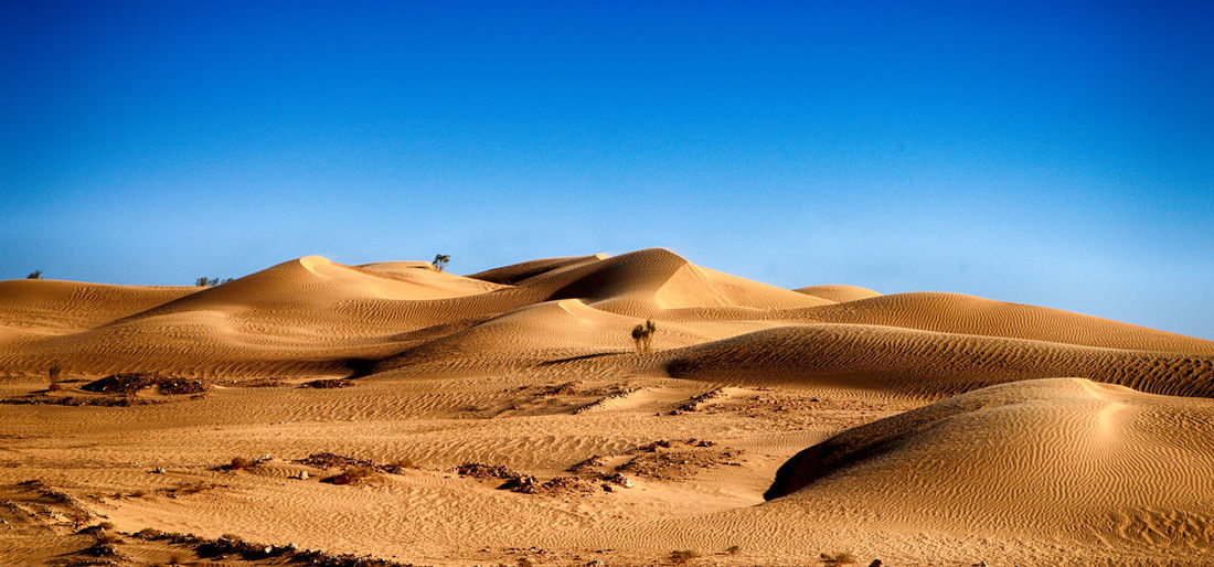 Sand Desert Scenics - Nature Sand Dune Landscape Climate Land Arid Climate Sky Tranquil Scene Tranquility Environment Non-urban Scene Clear Sky Beauty In Nature Blue Nature Remote No People Day Outdoors Atmospheric