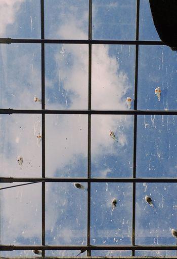 Full frame shot of water against sky