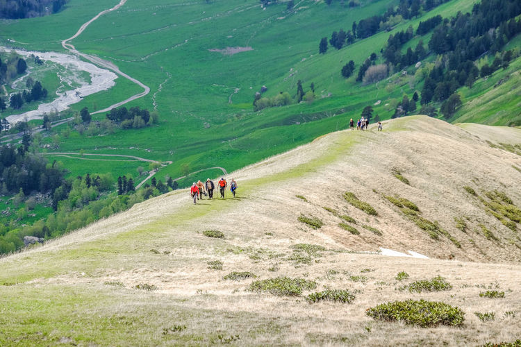 Green grass in the valley at the foot of the mountains. A group of climbers goes up the mountain. Warm summer day. Several people in the photo. Grass Green Green Color Activity Beauty In Nature Day Environment Grass Green Color Group Group Of People Hiking Landscape Leisure Activity Lifestyles Men Mountain Mountain Range Nature Non-urban Scene Outdoors People Plant Real People Scenics - Nature