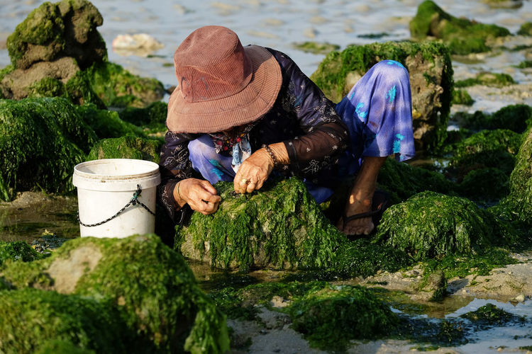 Woman Searching For Clam In Seaweed At Beach