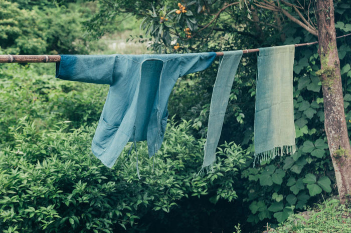 Clothes drying against plants and trees on field