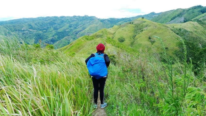 Plant Landscape Green Color Land One Person Rear View Environment Rural Scene Growth Leisure Activity Ilovetrekking Philippinemountains Woman Traveler Adventure Woman TrekkerAgriculture Beauty In Nature Field Nature Scenics - Nature Day Adult Women Lifestyles Outdoors