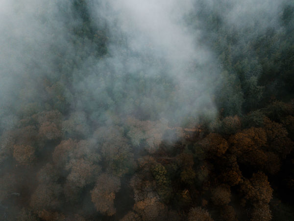 Autumn Forest drone view Smoke - Physical Structure No People Environment Day Nature Scenics - Nature Beauty In Nature Non-urban Scene Tranquility Land Tranquil Scene Tree Outdoors Forest Mountain Environmental Issues Cloud - Sky Fog Emitting Pollution Power In Nature Air Pollution Smog