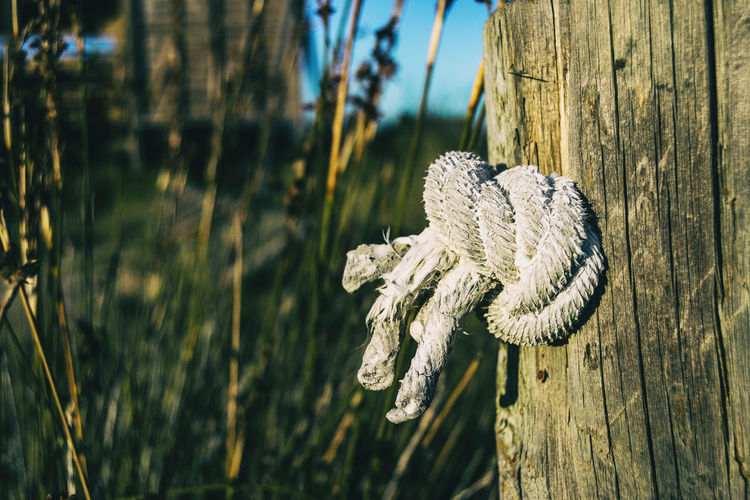 Natural jute rope wound on a pole