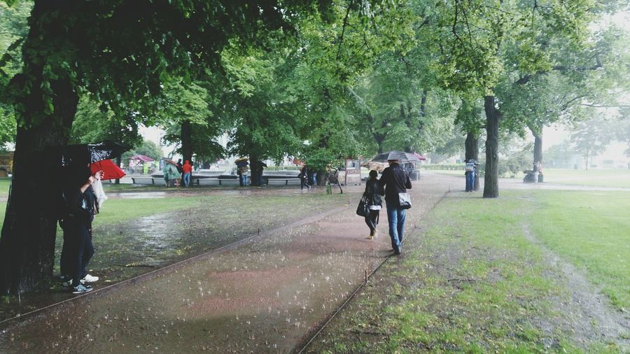 Full length of people walking in park