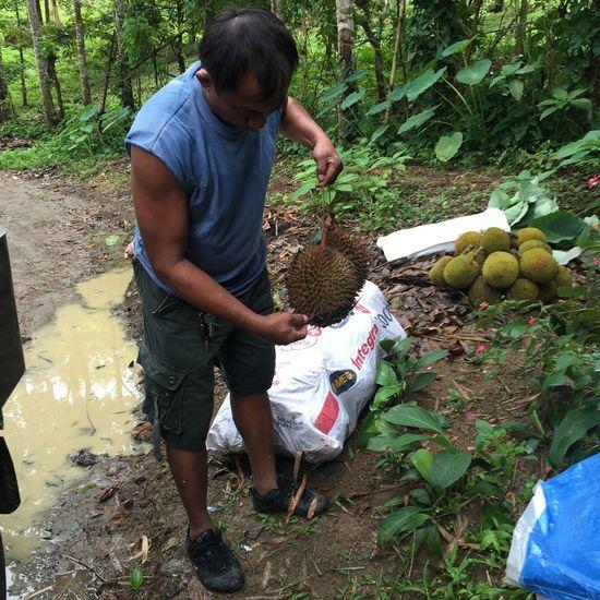 Farmer Old Man Casual Clothing Fruit Harvesting Lifestyles Nature Tree Vegetable The Week On EyeEm