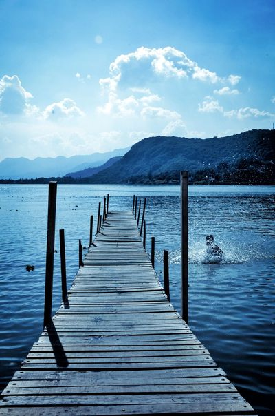 Water Pier Wooden Post Wood - Material Outdoors Mountain Lake Day No People Scenics Jetty Nature Beauty In Nature Landscape Bird Sky Animal Themes Enjoying Life Enjoying The View Enjoying The Lake  Enjoying The Landscape Happy People Happy Happy New Year Chapala Lake The Week On EyeEm