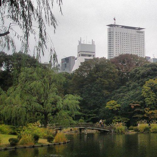 Japon Japan Paisaje Jardin Nature Photography Paisaje Japones Park