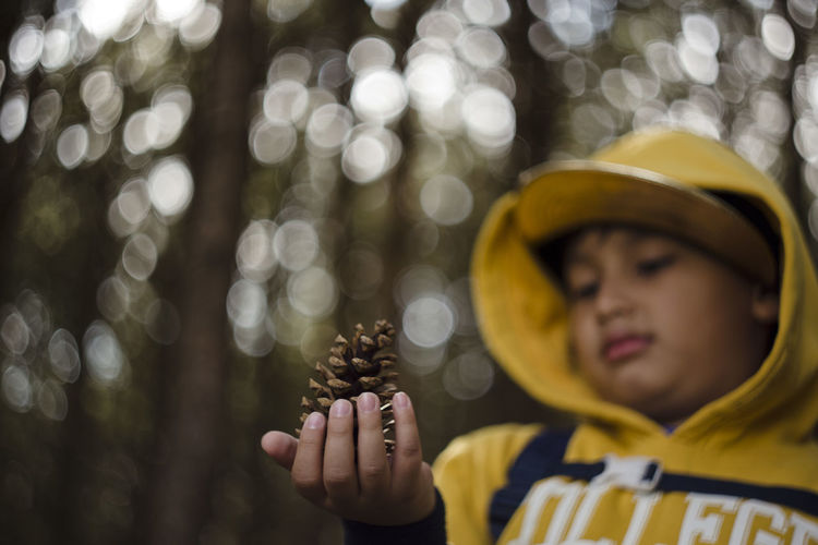 Low Angle View Of Boy Holding Pine Cone In Forest