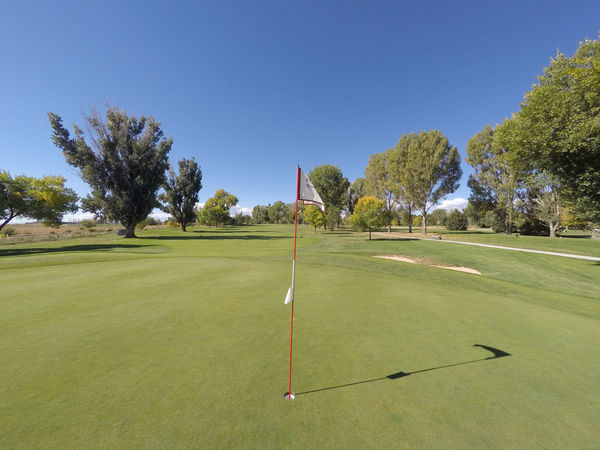 Putting green on a golf course with flag. Clear Sky Day Flag Golf Golf Course Golf Hole Golfing No People Putting Green Putting Green Flag Sky Tree