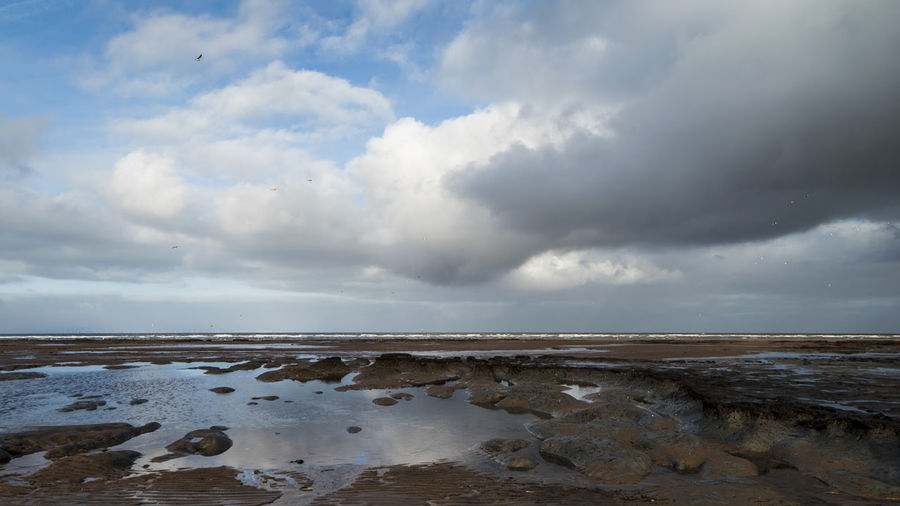 Landscape at Holme-next-the-Sea Beach Beauty In Nature Birds Birds In Flight Cloud Cloud - Sky Coast Day HolmeBeach Nature No People Norfolk Norfolk Uk Nwt Outdoors Reflection Saltmarshes Sand Scenics Sea Sky Travel Destinations Water