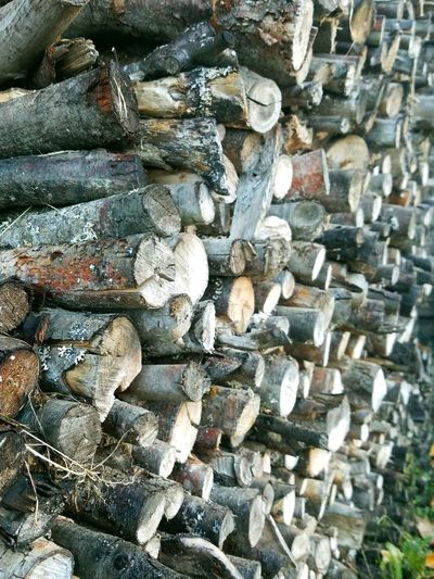 Always Be Cozy Stocking For The Winter Wood Abundance No People Timber Woodpile Close-up Nature Stack Pnwliving Art Is Everywhere