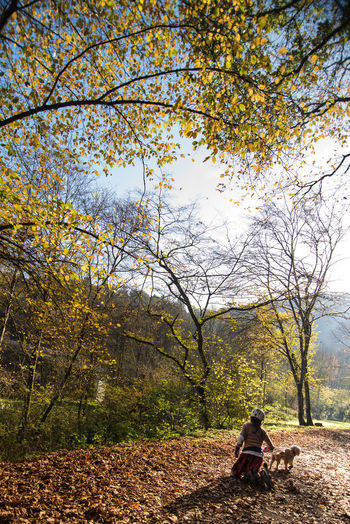 Rear view of woman sitting at park during autumn