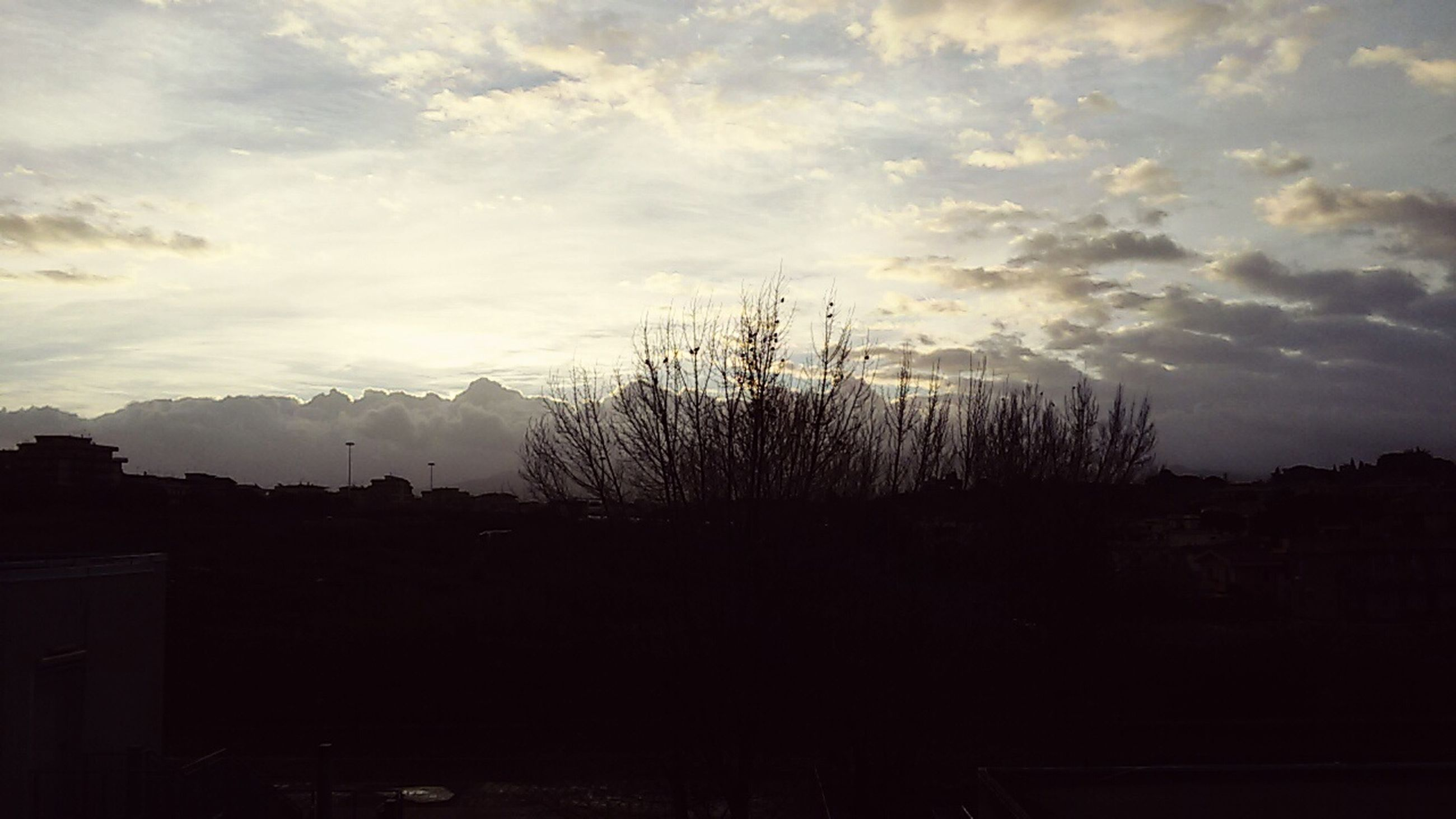 silhouette, sky, tree, tranquility, tranquil scene, cloud - sky, scenics, beauty in nature, nature, landscape, sunset, cloud, dusk, dark, cloudy, growth, outdoors, outline, idyllic, no people
