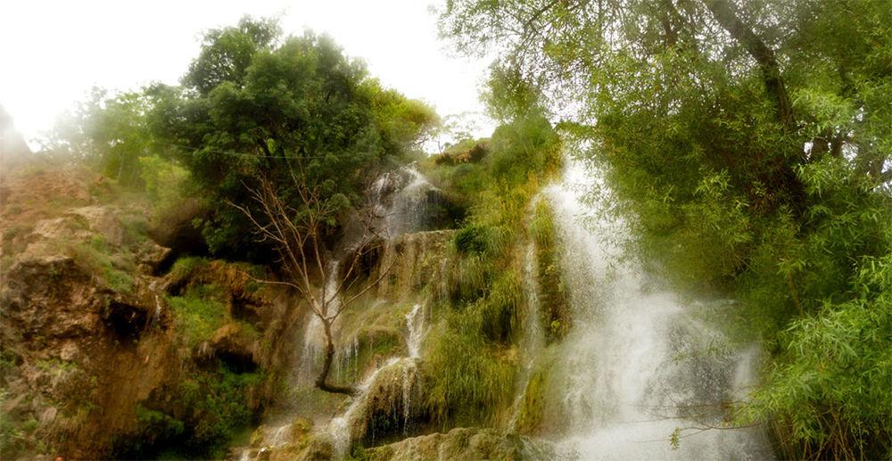 Nature Tree No People Growth Beauty In Nature Grass Water Waterfall Waterfalls Nature Tree My Point Of View آبشار منظره درختان درخت طبیعت طبیعت_ایران