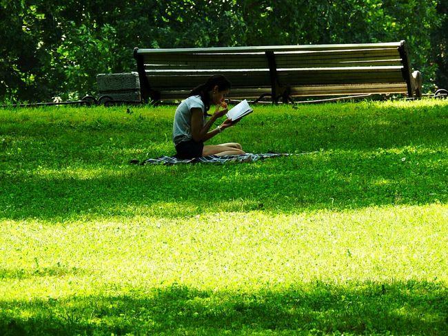 Reading A Book Park Relaxing Enjoying Life Russia Sankt-peterburg Sunny Day 🌞 Summer Views Tavrichesky Garden 43 Golden Moments Showcase July Streetphotography Hidden Gems