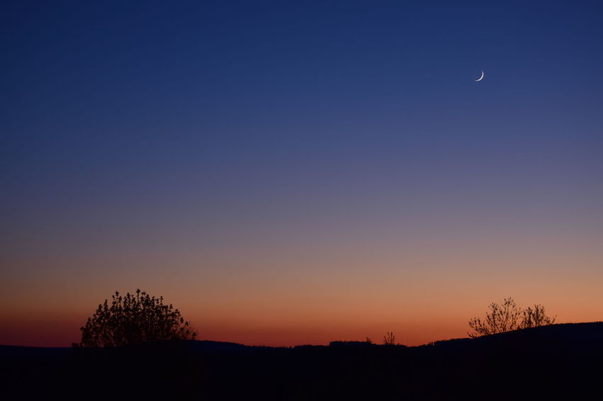 Moon Dusk Tree Landscape Clear Sky Tranquil Scene Tranquility Copy Space Silhouette Beauty In Nature Nature Blue Dark Outdoors Scenics Sunset Outline Romantic Sky Remote Non-urban Scene No Filter, No Edit, Just Photography High Section