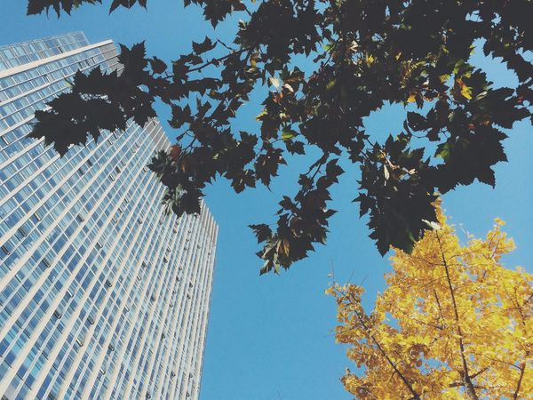 On A Break Autumn Sunny