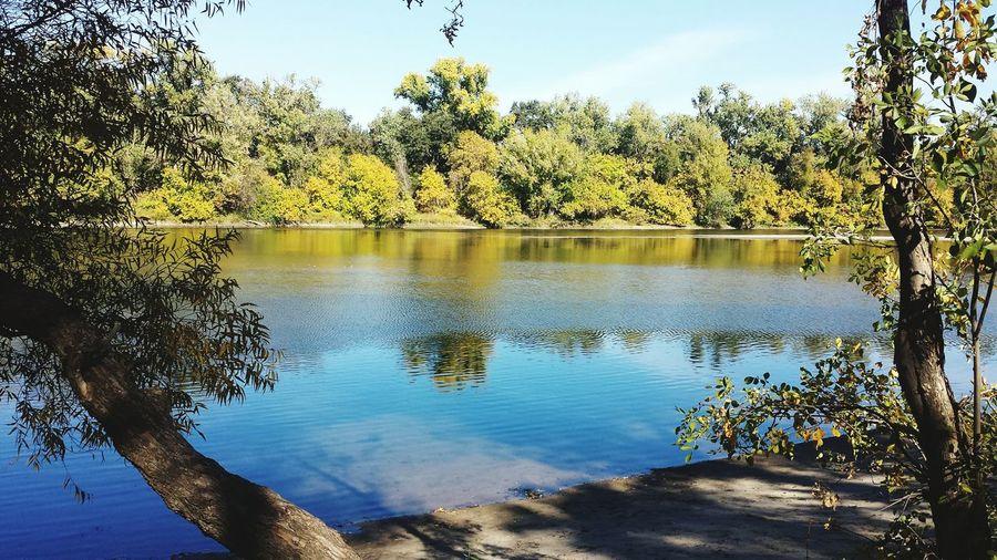 Shoreline of American River in Sacramento, California First Eyeem Photo