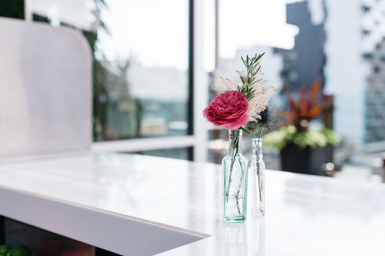 Peony flower in glass vase on table at home