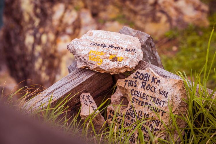 Text Communication No People Plant Close-up Western Script Day Selective Focus Nature Solid Land Sign Rock Focus On Foreground Outdoors Rock - Object Food Fungus Grass Information Message