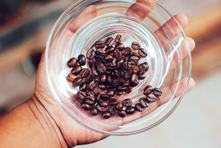 Hand Human Hand One Person Human Body Part Holding Roasted Coffee Bean Coffee Food And Drink Coffee - Drink Drink Real People Food Freshness Indoors  Unrecognizable Person Close-up Lifestyles Brown Refreshment Body Part Caffeine Finger Glass