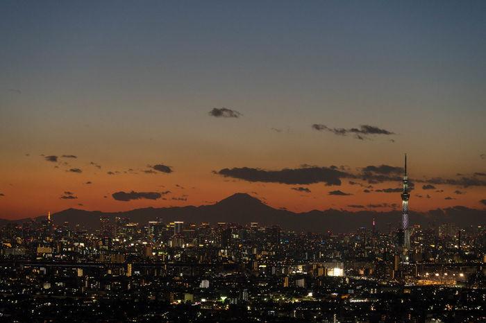 東京スカイツリー 富士山 東京タワー
