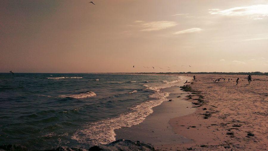 LBI NJ. Jersey Shore Beach Lifes A Beach New Jersey