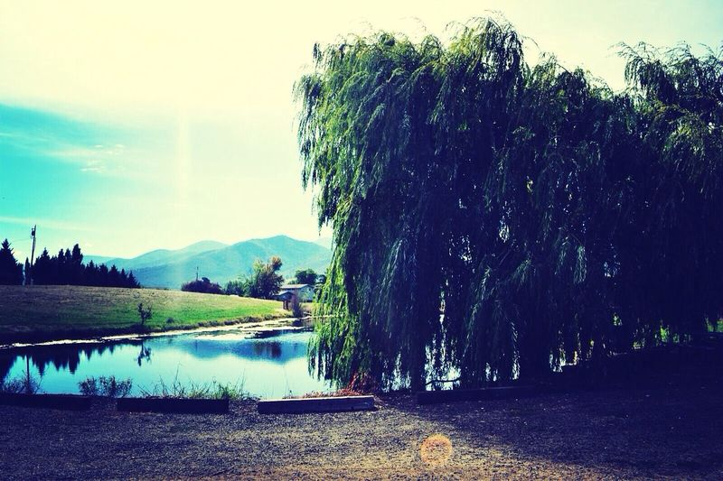 Lakeside mountains Wine Tasting Nature_collection Hide And Seek Eye4photography