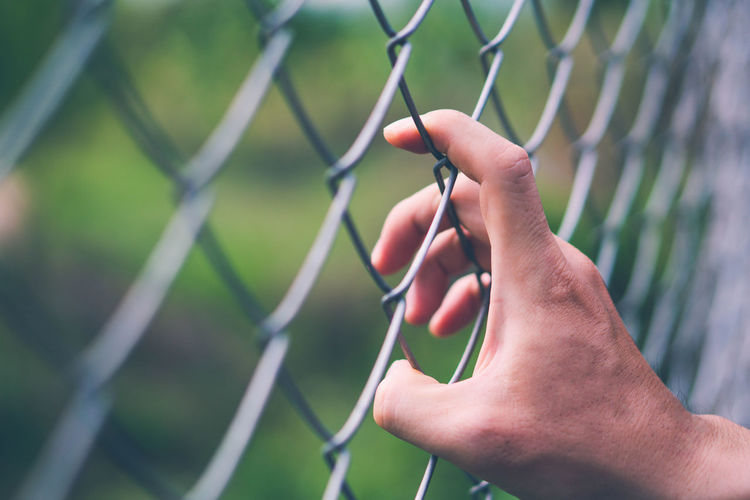 Close-up of hand holding chainlink fence against blurred background