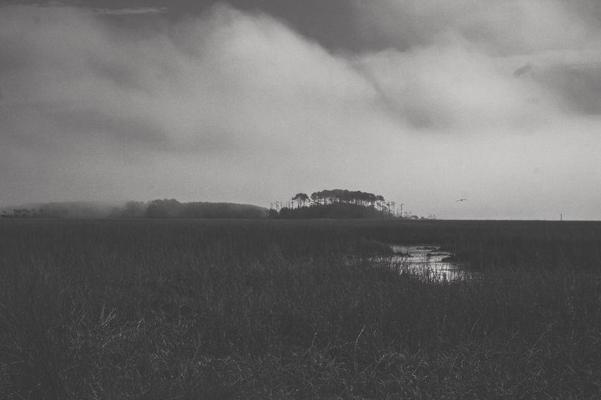 Hog Inlet North Myrtle Beach Blackandwhite Landscape Sky Nature Beauty In Nature Tranquility Tranquil Scene No People Sea Water Scenics Cloud - Sky Outdoors Day