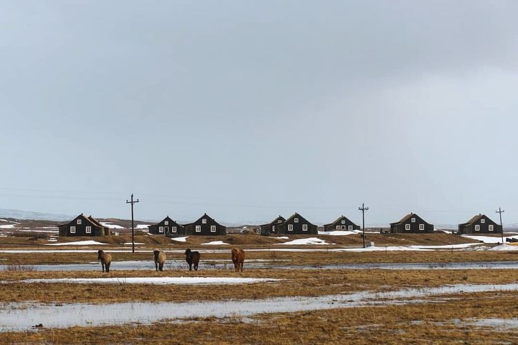 People on field by houses against sky during winter