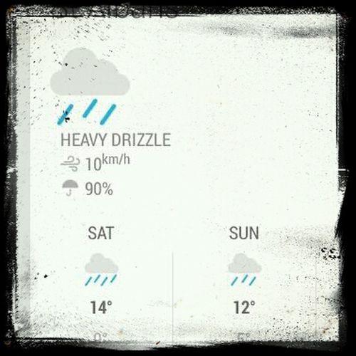 Rain Today's Weather Report