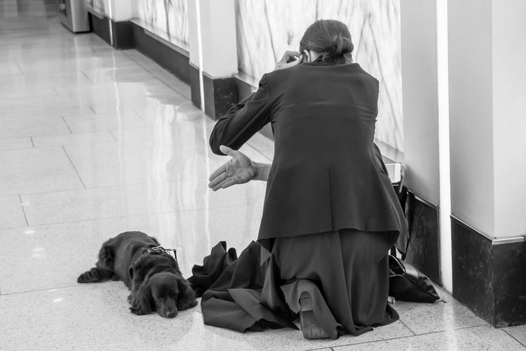 The Street Photographer - 2018 EyeEm Awards Adult Canine Day Dog Domestic Domestic Animals Flooring Full Length Indoors  Lifestyles Mammal One Animal People Pet Owner Pets Real People Rear View Women