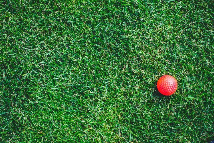 High angle view of red golf ball on grassy field