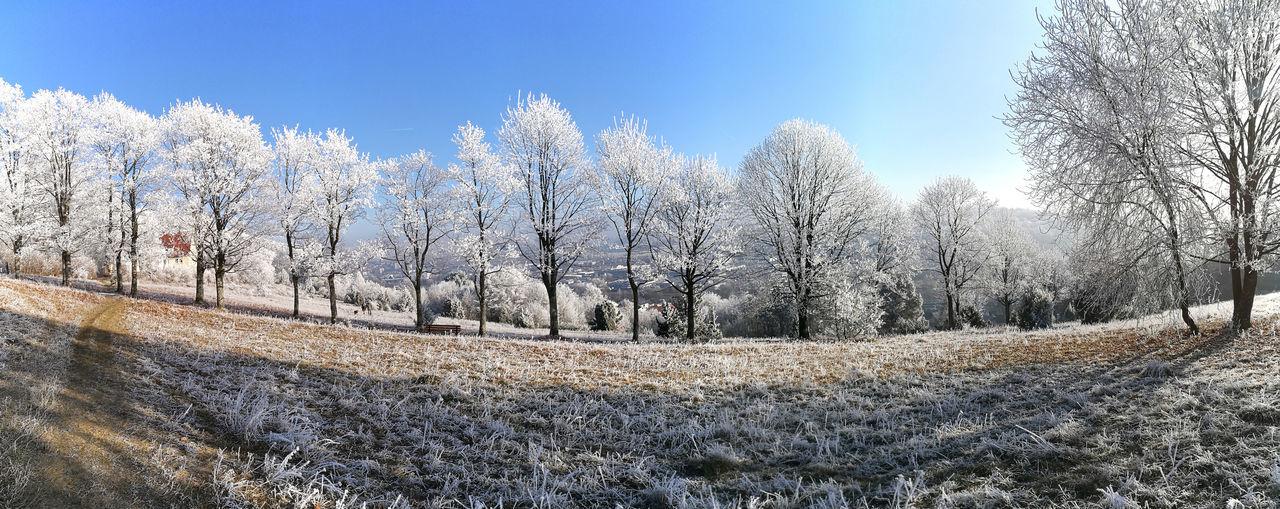 Badenwürtenberg Germany Heidenheim Heimat Landschaft Neujahr Neujahr 2017 Neujahrsspaziergang No People Outdoors Panorama Raureif  Schnee Sky Winter